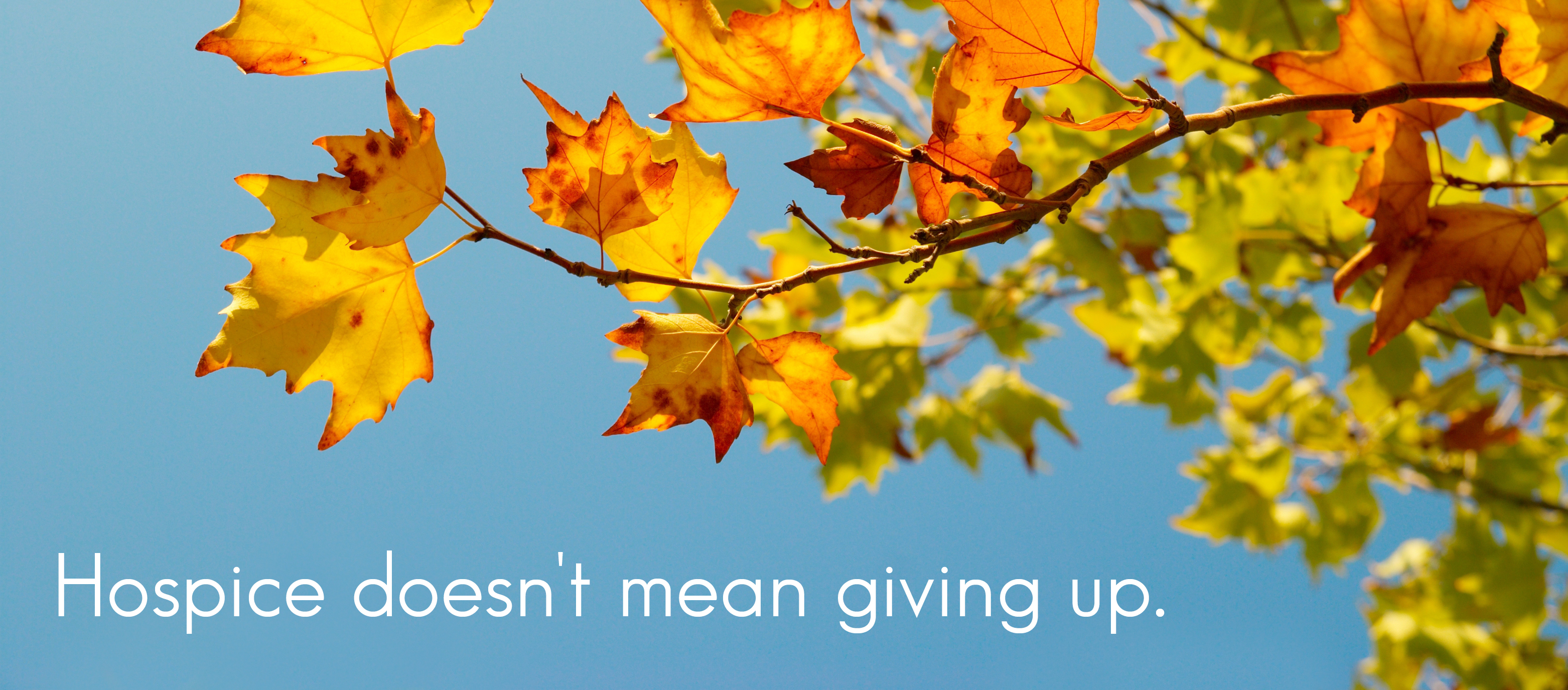 Hospice doesn't mean giving up
